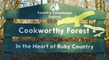 cookworthy-forest-beaworthy-devon
