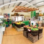 lifton farm shop