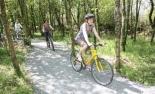 Roadford_Cycle_Path