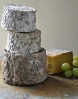 shebbear cheese