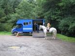 Horse box Cookworthy-1