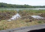 tamar-lakes
